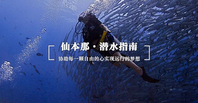 仙本那 · 潜水指南